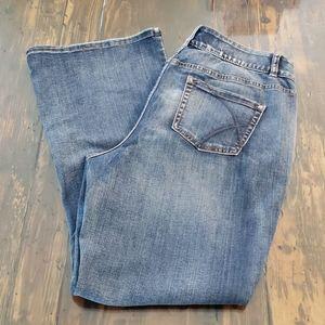 Lane Bryant high rise jeans